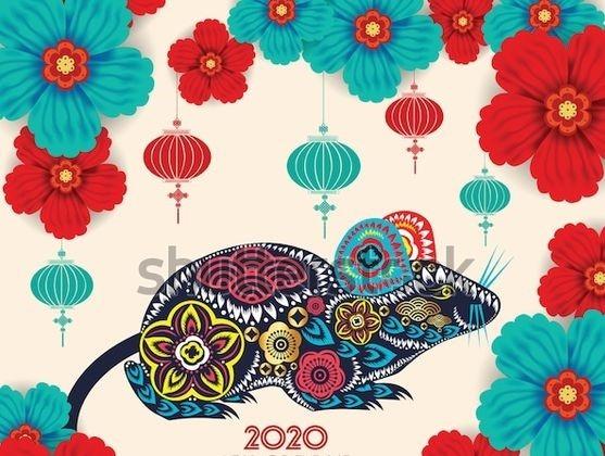 LETO BELE PODGANE 2020 DELAVNICA DUŠAN DONKO